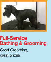 Sudslingers self service dog wash and professional dog grooming in we offer professional grooming full service bathing and an easy self service dog wash option all of which of course will guarantee a clean solutioingenieria