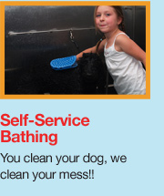 Sudslingers self service dog wash and professional dog grooming in we offer professional grooming full service bathing and an easy self service dog wash option all of which of course will guarantee a clean solutioingenieria Images